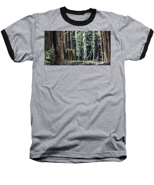 Baseball T-Shirt featuring the photograph Morning Redwoods by Shirley Mangini