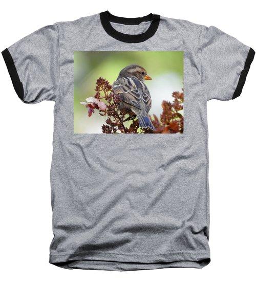 Morning Rest Baseball T-Shirt