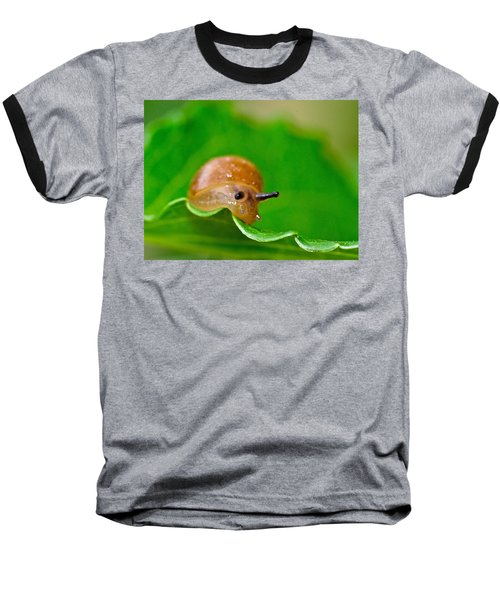 Morning Snail Baseball T-Shirt