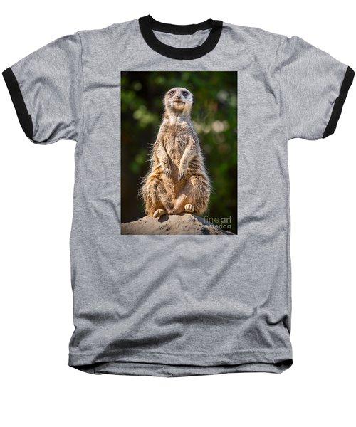 Morning Sun Baseball T-Shirt by Jamie Pham