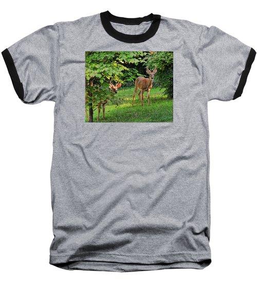 Morning Visitors Baseball T-Shirt by Rick Friedle