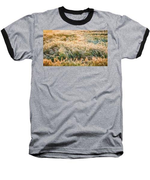 Morning Wheat Baseball T-Shirt