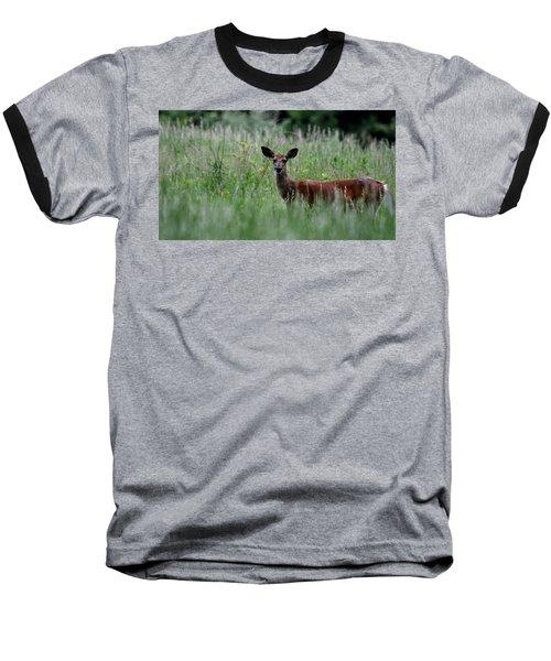 Morninng Deer Baseball T-Shirt