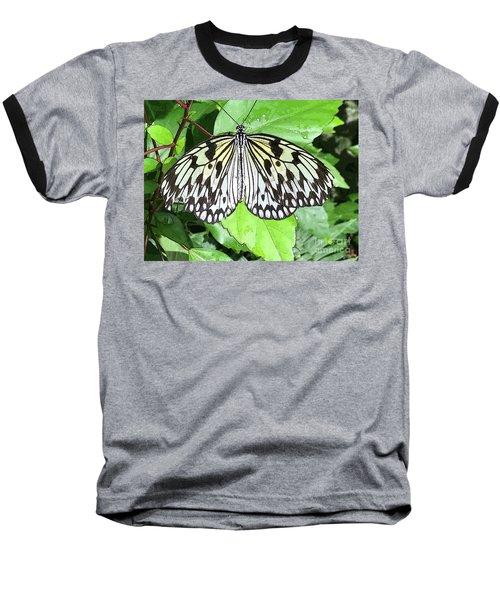 Mosaic Wing Spread Baseball T-Shirt