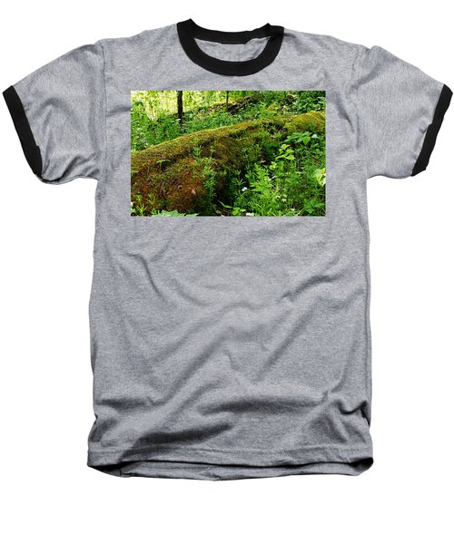 Moss Covered Log 2 Baseball T-Shirt