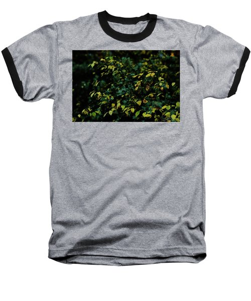 Moss In Colors Baseball T-Shirt