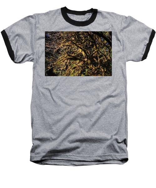 Mossy Trees Baseball T-Shirt