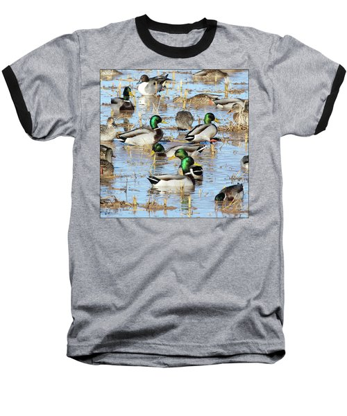 Mostly Mallards Baseball T-Shirt