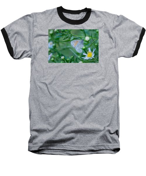 Baseball T-Shirt featuring the photograph Moth by Alana Ranney