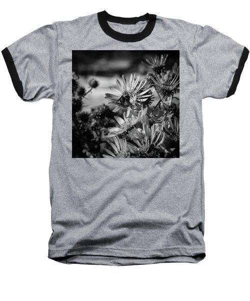 Moth And Flowers Baseball T-Shirt