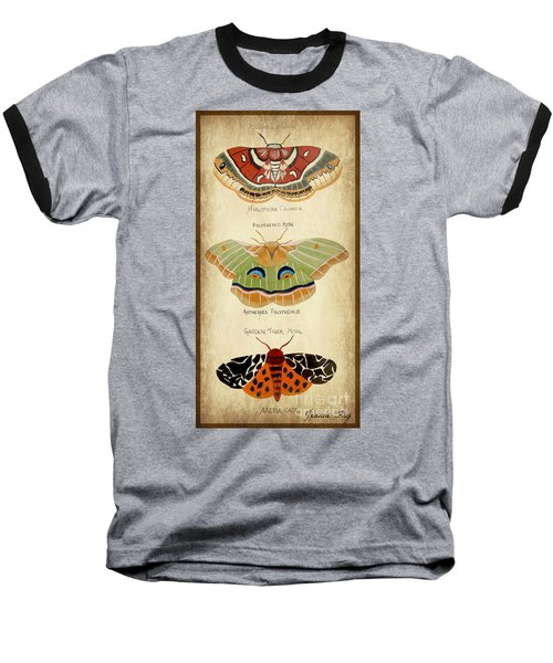 Moth Study Baseball T-Shirt