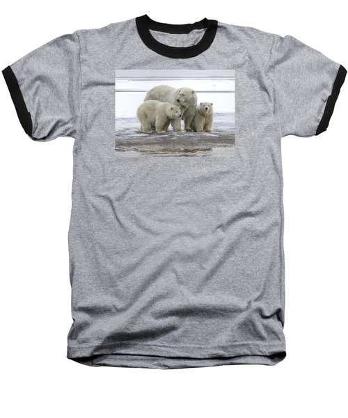 Mother And Cubs In The Arctic Baseball T-Shirt