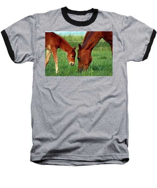Mother And Foal 3377 H_2 Baseball T-Shirt