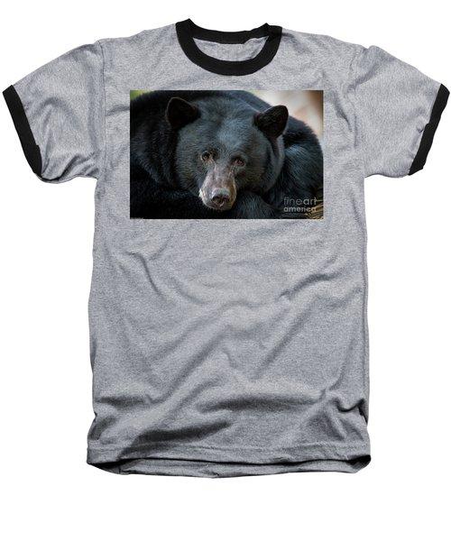 Mother Bear Baseball T-Shirt by Mitch Shindelbower