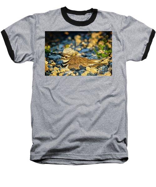 Mother Killdeer 2 Baseball T-Shirt