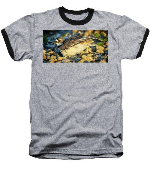 Mother Killdeer 3 Baseball T-Shirt