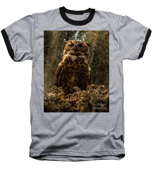 Mother Owl Posing Baseball T-Shirt by Jane Axman