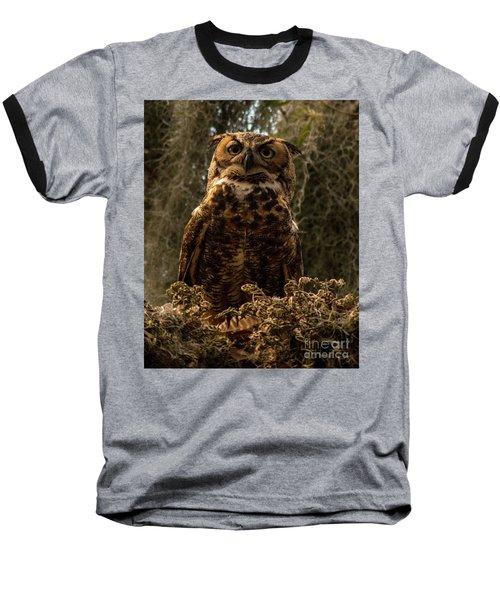 Mother Owl Posing Baseball T-Shirt