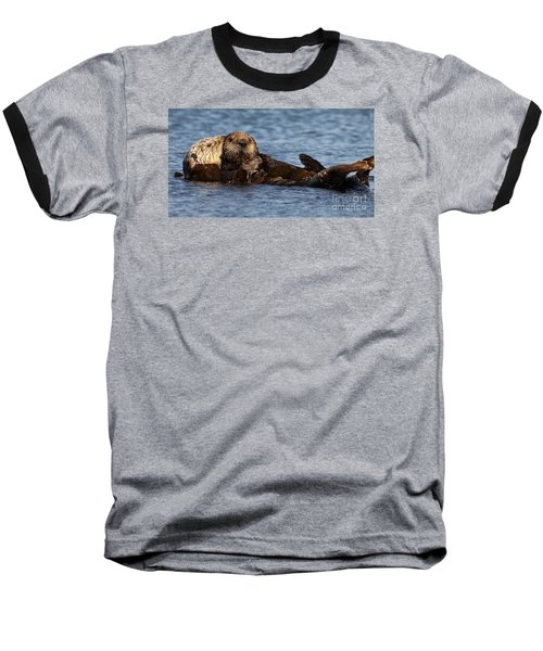 Mother Sea Otter Cuddling Baby Baseball T-Shirt by Max Allen