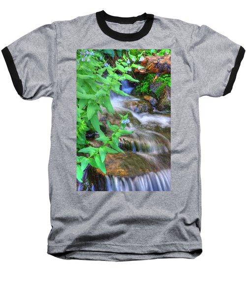 Mounain Bluebells Baseball T-Shirt