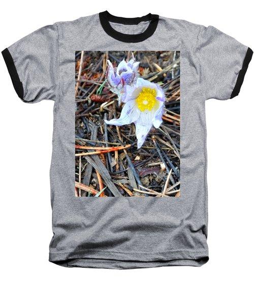 Mount Margaret Spring 14344 Baseball T-Shirt by Jerry Sodorff