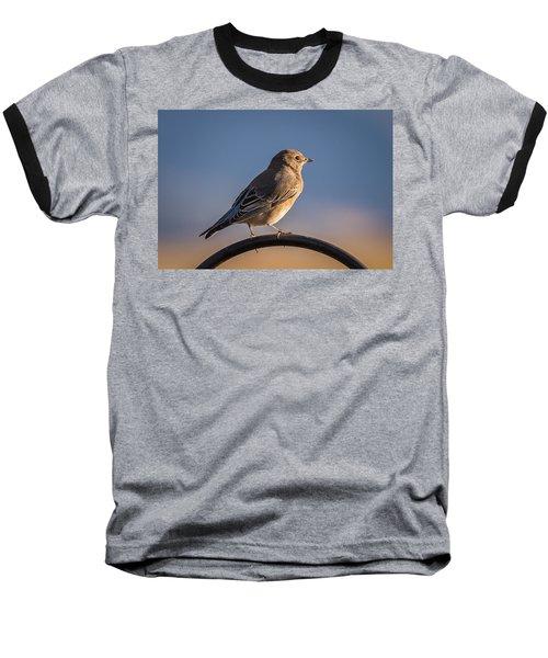 Mountain Bluebird At Sunset Baseball T-Shirt by John Brink