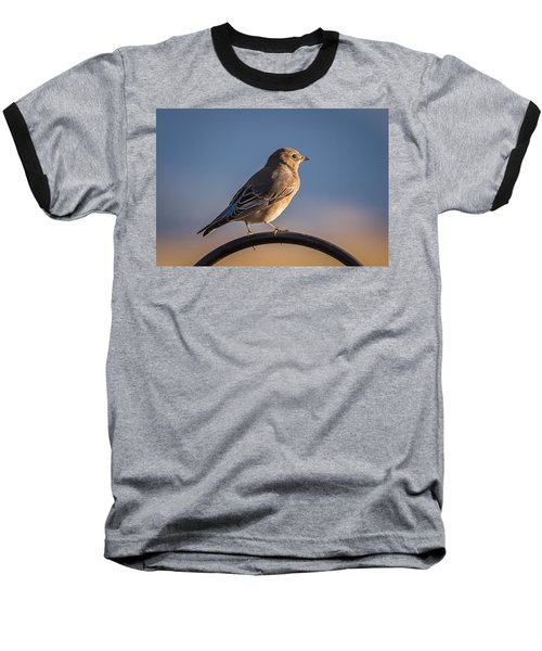 Mountain Bluebird At Sunset Baseball T-Shirt
