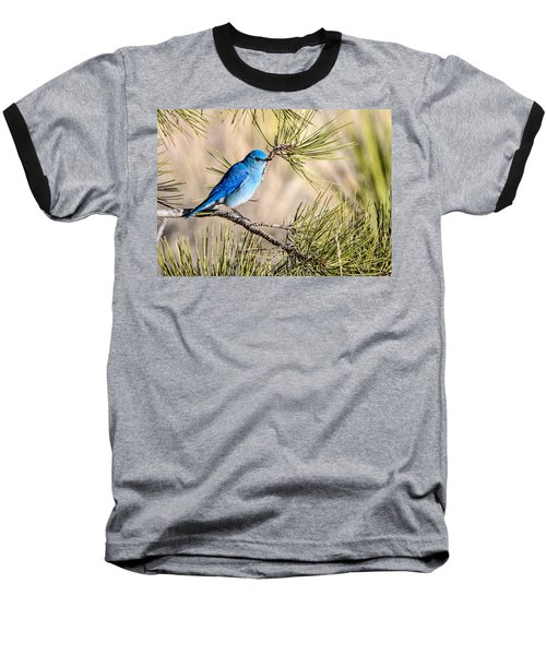 Mountain Bluebird In A Pine Baseball T-Shirt