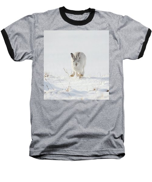 Mountain Hare Approaching Baseball T-Shirt