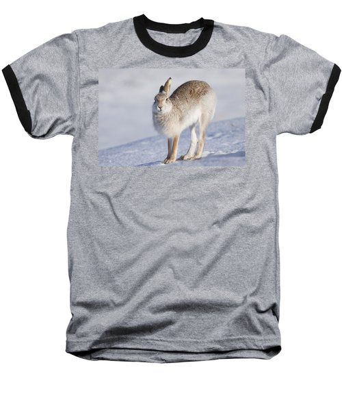 Mountain Hare In The Snow - Lepus Timidus  #2 Baseball T-Shirt