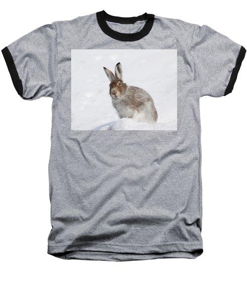 Mountain Hare In Winter Baseball T-Shirt