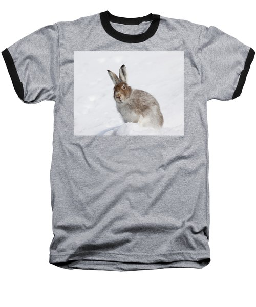 Mountain Hare In Winter Baseball T-Shirt