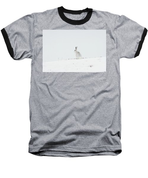 Mountain Hare Sat In Snow Baseball T-Shirt
