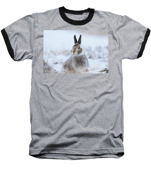 Mountain Hare - Scotland Baseball T-Shirt