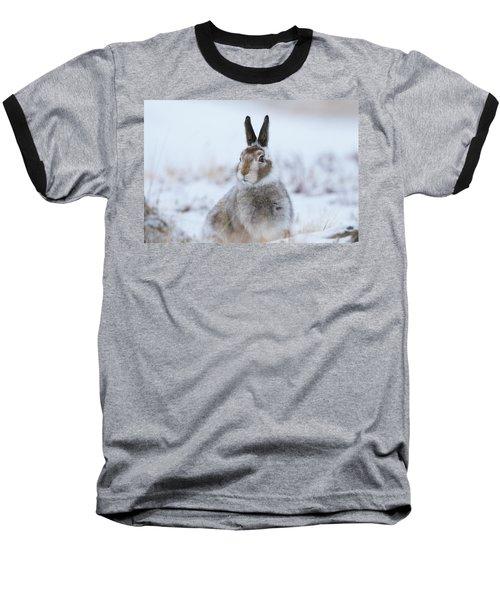 Mountain Hare - Scotland Baseball T-Shirt