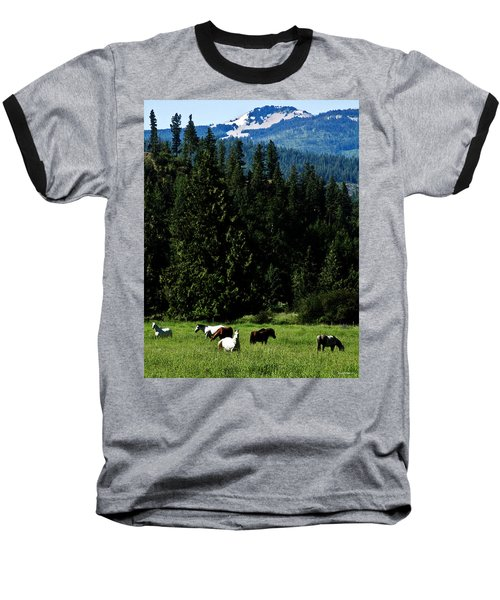Mountain Herd Baseball T-Shirt