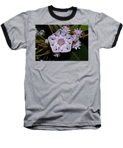 Mountain Laurel 005 Baseball T-Shirt by George Bostian
