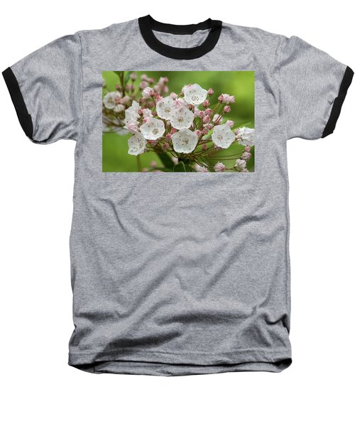 Mountain Laurel Baseball T-Shirt by Henri Irizarri