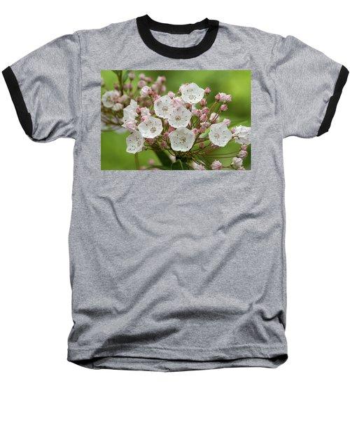 Mountain Laurel Baseball T-Shirt
