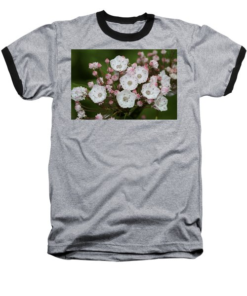 Mountain Laurel I Baseball T-Shirt by Henri Irizarri