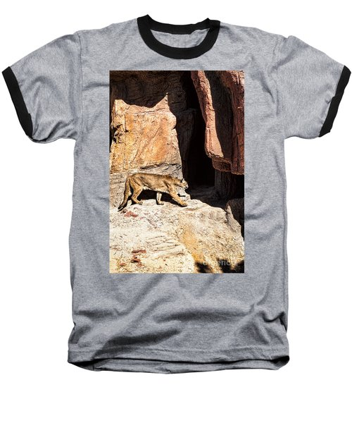 Mountain Lion Baseball T-Shirt by Lawrence Burry