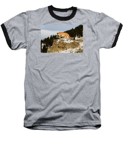 Mountain Lion On Rocks Baseball T-Shirt
