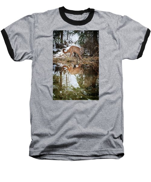 Mountain Lion Reflection Baseball T-Shirt