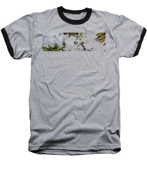 Mountain Lion Tracks In Snow Baseball T-Shirt
