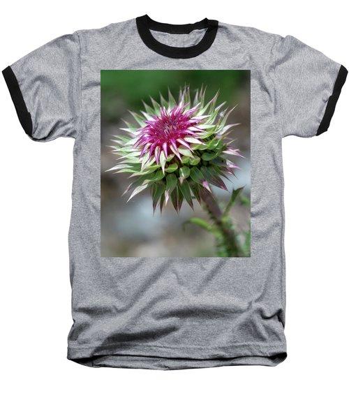 Mountain Thistle Baseball T-Shirt