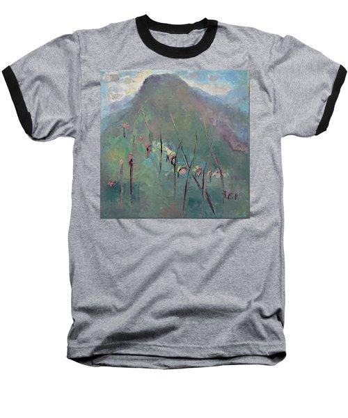 Mountain Visit Baseball T-Shirt
