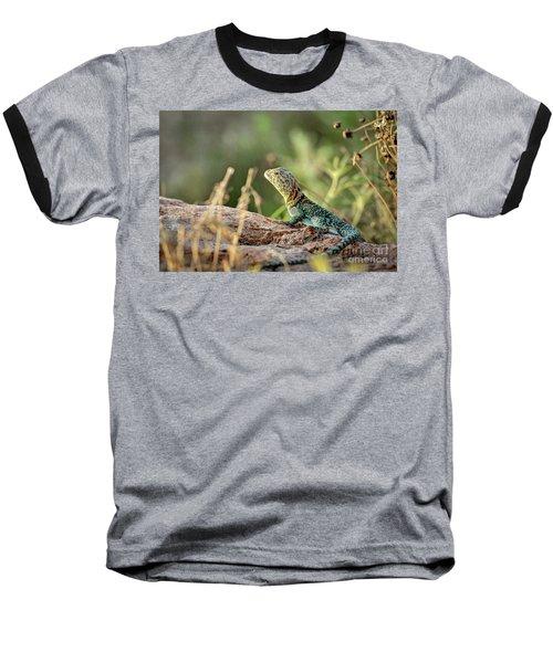 Mountian Boomer Baseball T-Shirt