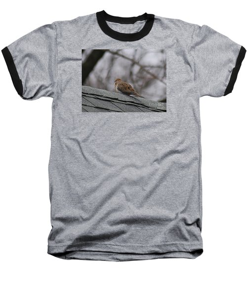 Mourning Dove 20120318_1a Baseball T-Shirt