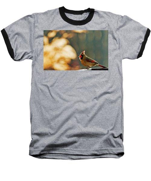 Mouthful Baseball T-Shirt