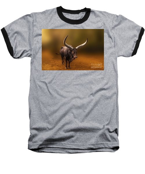 Mr. Bull From Africa Baseball T-Shirt by Charuhas Images
